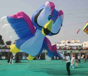 9 Interesting Facts about Makar Sakranti